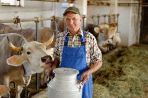 Работа в Америке на ферме