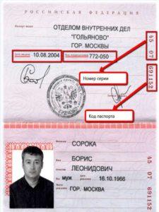 серию и номер паспорта