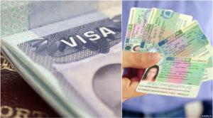 Категория оформляемой визы