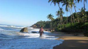 Зимний отдых на Шри-Ланка